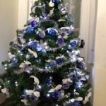 Un albero di Natale ecologico al Policlinico di Abano Terme.