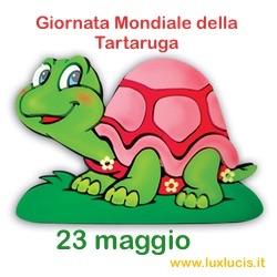 23 maggio … oggi anni fa    – Giornata Mondale delle Tartarughe