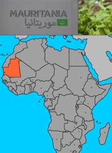 #Mauritania a #EXPO2015