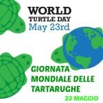23 maggio – Giornata delle Tartarughe – della #Legalità